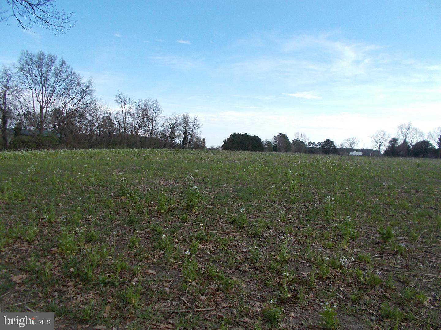 Photo for SUICIDE BRIDGE RD, EAST NEW MARKET, MD 21631 (MLS # MDDO124938)