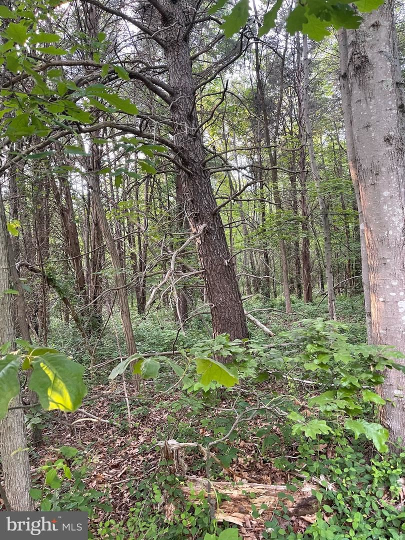 Photo of -PARCEL 312 WASCHE RD, DICKERSON, MD 20842 (MLS # MDMC683966)