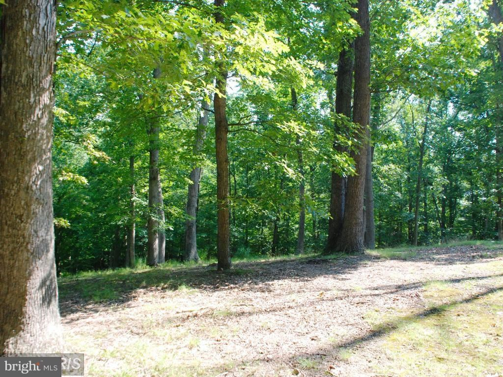 Photo for 11013 RIVERWOOD DR, POTOMAC, MD 20854 (MLS # 1000146974)