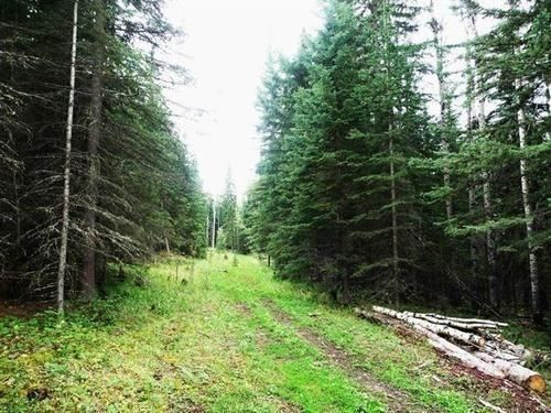 Photo of Lot 4 Little Red Estates, Rural Mountain View County, AB T0M 2E0 (MLS # C4301167)