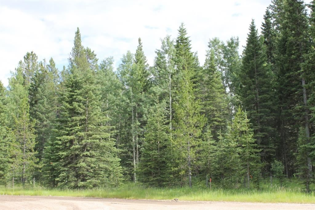Photo of 19.99 Acres Twp Rd 282, Rocky View County, AB T4C 1A5 (MLS # A1156368)