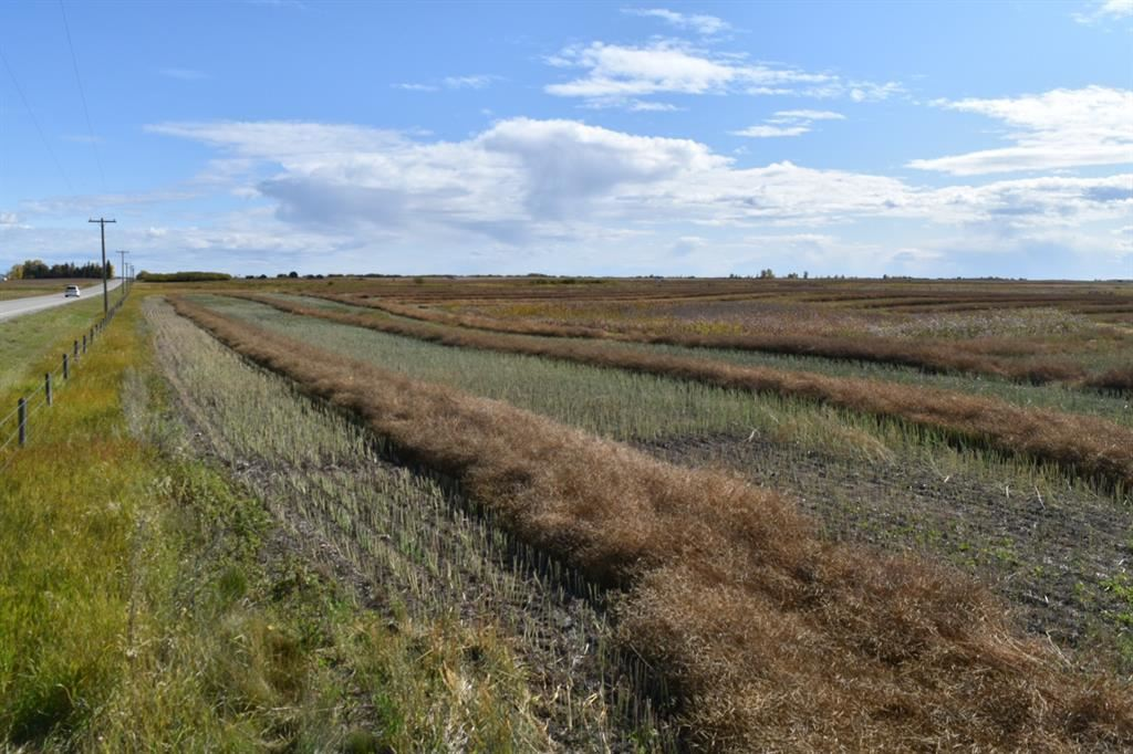 Photo of 4;27;26;13;SE, Rocky View County, AB T0M 1E0 (MLS # A1149554)