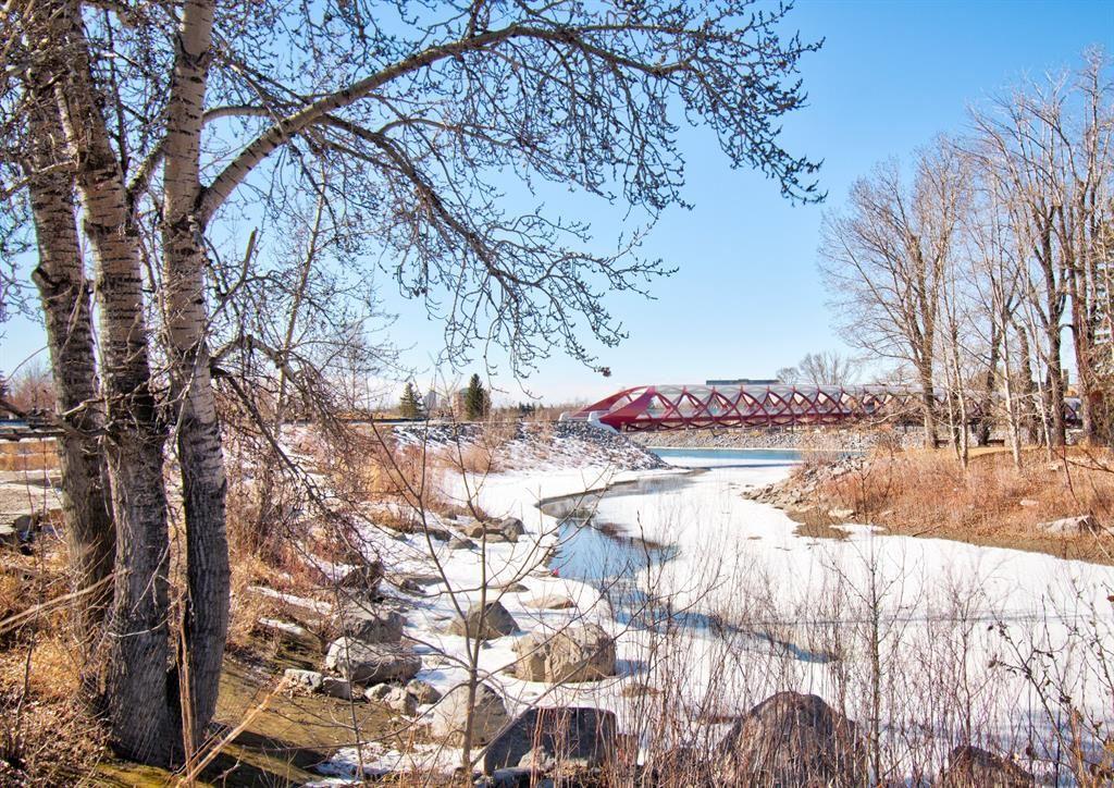 Photo of 660 Eau Claire Avenue SW #106, Calgary, AB T2P 5K3 (MLS # A1081795)
