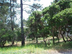 Photo of 0 Benson Avenue, Cambria, CA 93428 (MLS # SC17100015)