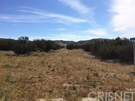 Photo of 0 Vac/Shannondale Rd/Vic Hannah Court, Acton, CA 93510 (MLS # SR21033051)