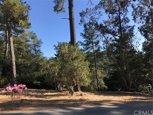 Photo of 0 Wilton Drive, Cambria, CA 93428 (MLS # SC19199131)