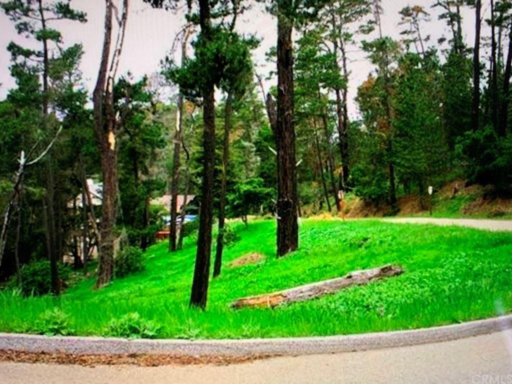 Photo of 0 Burton Drive, Cambria, CA 93428 (MLS # SC21179216)