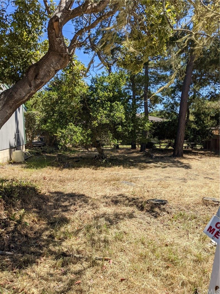Photo of 99999 Weymouth, Cambria, CA 93428 (MLS # SC21111301)