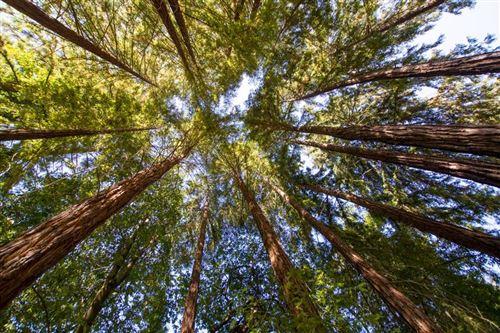 Photo of 0 Creekside Way, Outside Area (Inside Ca), CA 95018 (MLS # ML81855311)