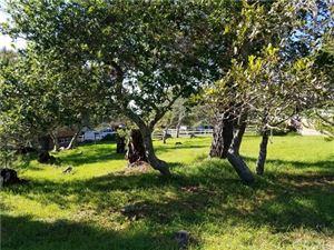 Photo of 877 Ardath Drive, Cambria, CA 93428 (MLS # SC18290352)