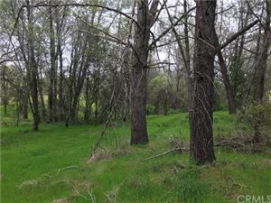 Photo of 0 FDR Trail, Oroville, CA 95966 (MLS # OR19108482)