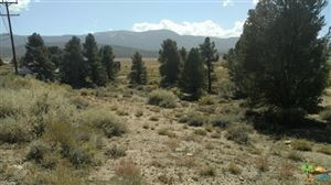 Photo of 0 Baldwin Lake Road, Big Bear, CA 92314 (MLS # 18409914PS)