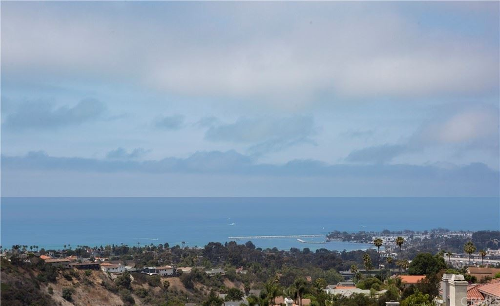Photo of 33761 Glocamora Lane, San Juan Capistrano, CA 92675 (MLS # OC21147514)