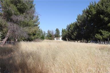 Photo of 0 Prospect Avenue, Paso Robles, CA 93446 (MLS # SP19137554)