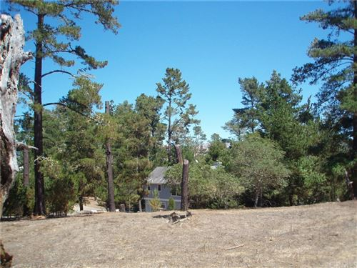 Photo of 0 Bradford Place, Cambria, CA 93428 (MLS # SC20104611)