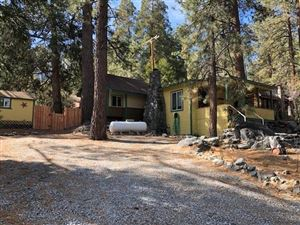 Photo of 1593 Twin Lakes Road, Wrightwood, CA 92397 (MLS # 509668)