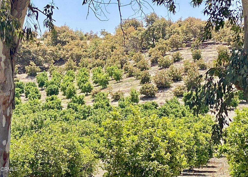 Photo of 5480 Grimes Canyon Road, Moorpark, CA 93021 (MLS # V1-4816)