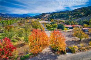 Photo of 12150 MOUNTAIN LION Road, Ojai, CA 93023 (MLS # 218015139)