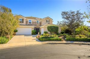 Photo of 4618 NANNYBERRY Court, Moorpark, CA 93021 (MLS # 219013201)