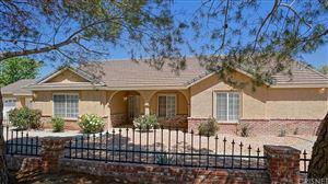 Photo of 11425 DURANGO Lane, Agua Dulce, CA 91390 (MLS # SR19089254)