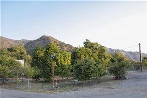 Photo of 17896 South MOUNTAIN Road, Santa Paula, CA 93060 (MLS # 218008584)