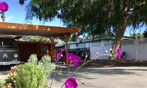 Photo of 668 SPRING Street, Oak View, CA 93022 (MLS # 217010704)