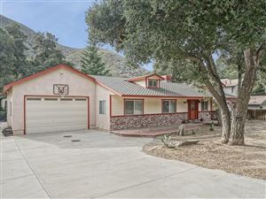 Photo of 15928 SPUNKY CANYON Road, Green Valley, CA 91390 (MLS # SR17275751)