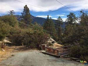 Photo of 53121 ROCKMERE Road, Idyllwild, CA 92549 (MLS # 18305758PS)