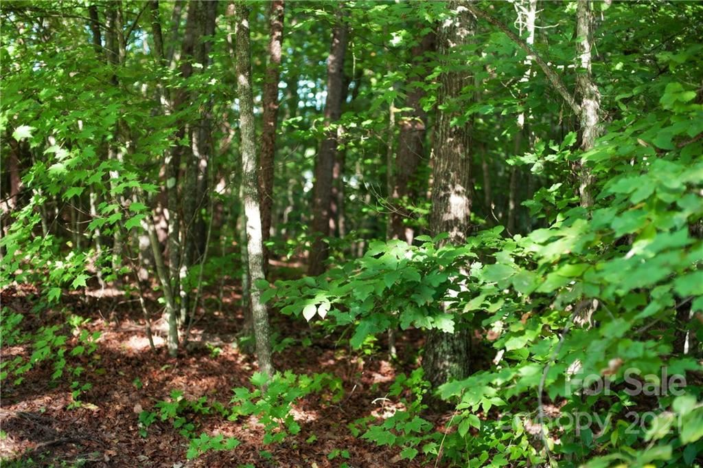 Photo of 1630 Henry McCall Road, Old Fort, NC 28762 (MLS # 3781000)
