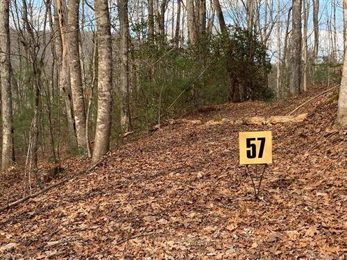 Photo of 57 Big Branch Road #57, Brevard, NC 28712 (MLS # 3470003)