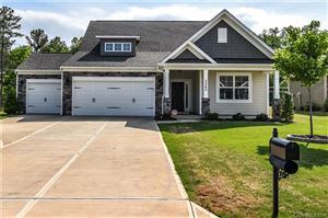 Photo of 3342 Delaware Drive, Denver, NC 28037 (MLS # 3501013)