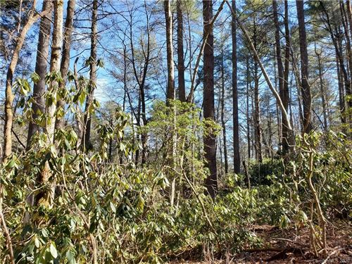 Photo of 100 Wood Thrush Way, Brevard, NC 28712 (MLS # 3588013)