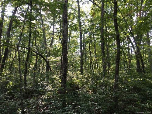 Photo of lot 16 Robin Hood Road, Brevard, NC 28712 (MLS # 3290046)