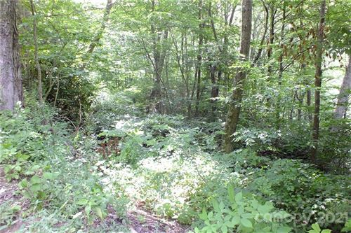 Photo of Lot 19 Long Branch Road #19, Maggie Valley, NC 28751 (MLS # 3766046)