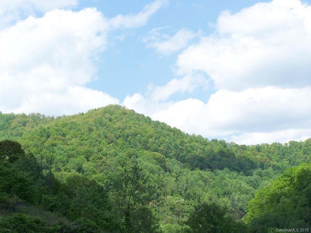Photo of 000 Smoke Vine Lane, Mars Hill, NC 28754 (MLS # 3489046)