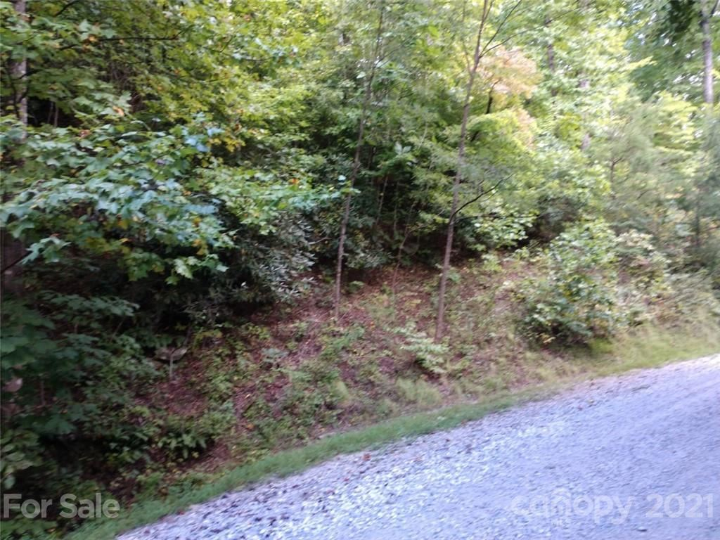 Photo of 00 Lake Road #6C, Old Fort, NC 28762 (MLS # 3790056)
