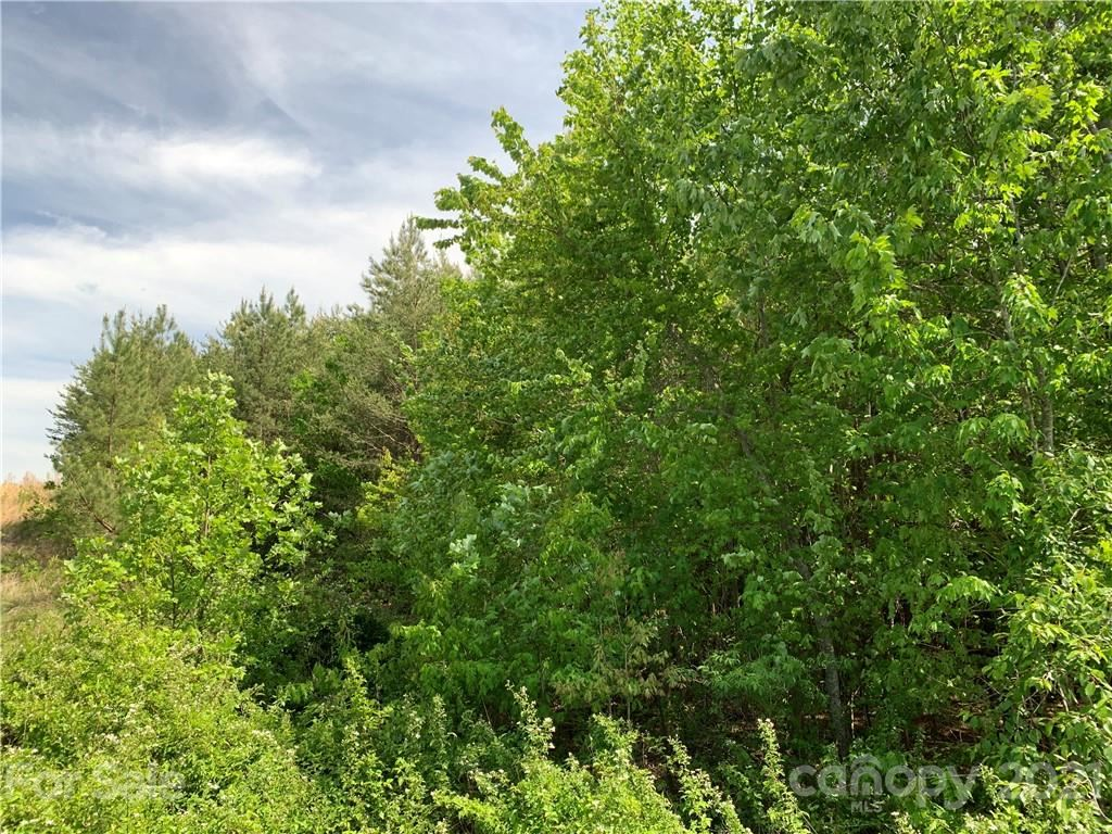 Photo of 999 Silver Creek Road #6, Mill Spring, NC 28756 (MLS # 3735060)