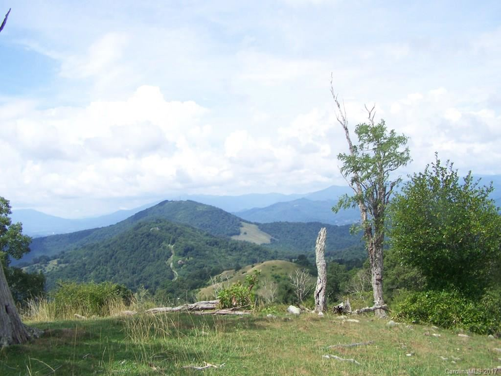 Photo of 2504 Crabtree Mountain Road, Clyde, NC 28721 (MLS # 3251063)