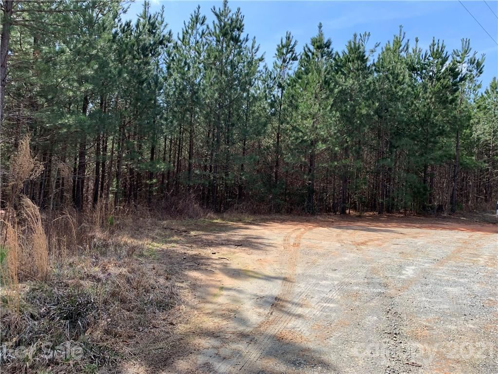 Photo of 999 Green River Cove Road #10, Mill Spring, NC 28756 (MLS # 3713067)