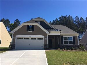 Photo of 328 Picasso Trail #177, Mount Holly, NC 28120 (MLS # 3499068)