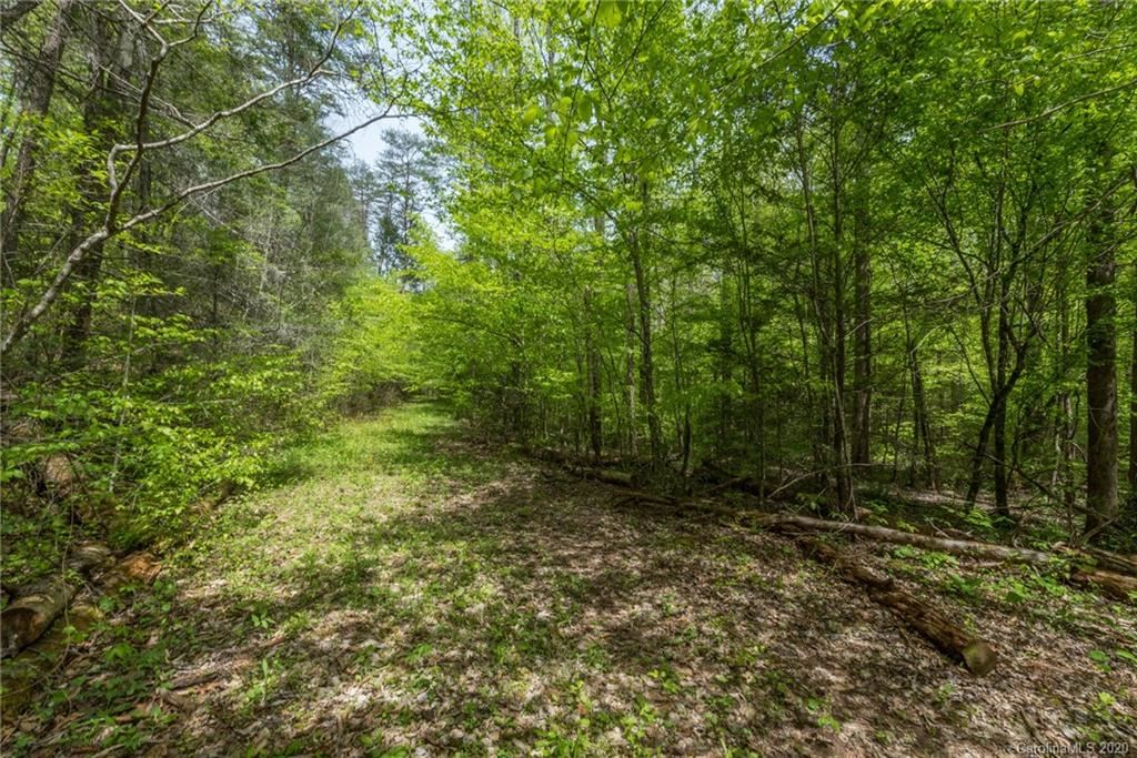 Photo of 228 Searcy Road #Not Applicable, Lake Lure, NC 28746 (MLS # 3591068)