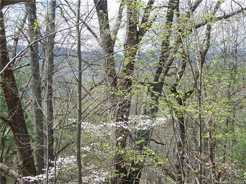 Photo of 00 Cove Creek Road #2, Waynesville, NC 28785 (MLS # 3640071)