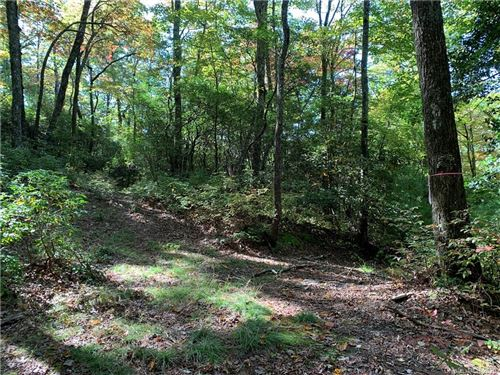 Photo of Lot 28 Big Hill Road #28, Brevard, NC 28712 (MLS # 3671082)
