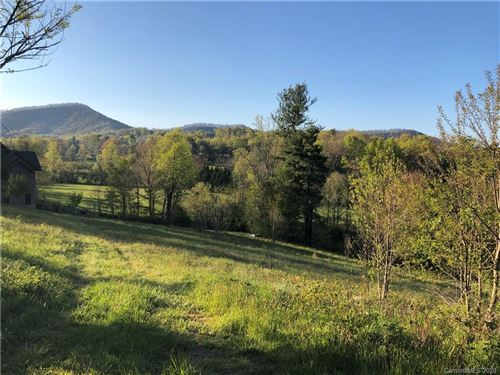 Photo of 29 Bear Flower Trail, Arden, NC 28704 (MLS # 3359083)