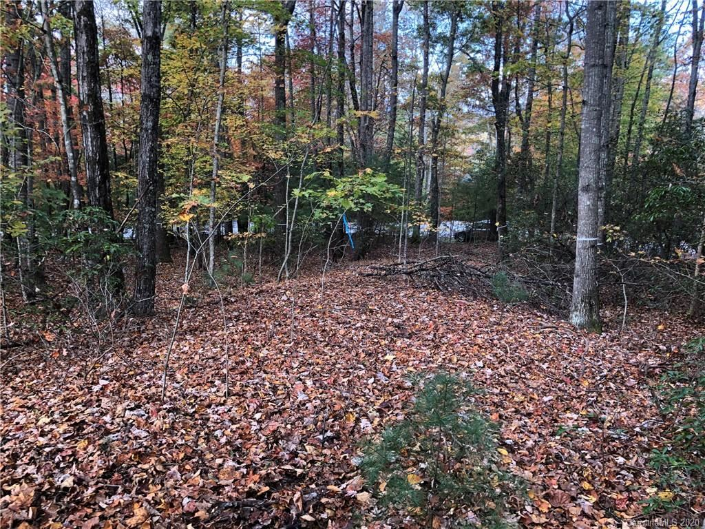 Photo of 61 Old Hickory Trail #119, Hendersonville, NC 28739 (MLS # 3676084)
