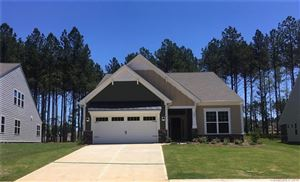 Photo of 320 Picasso Trail #179, Mount Holly, NC 28120 (MLS # 3445088)