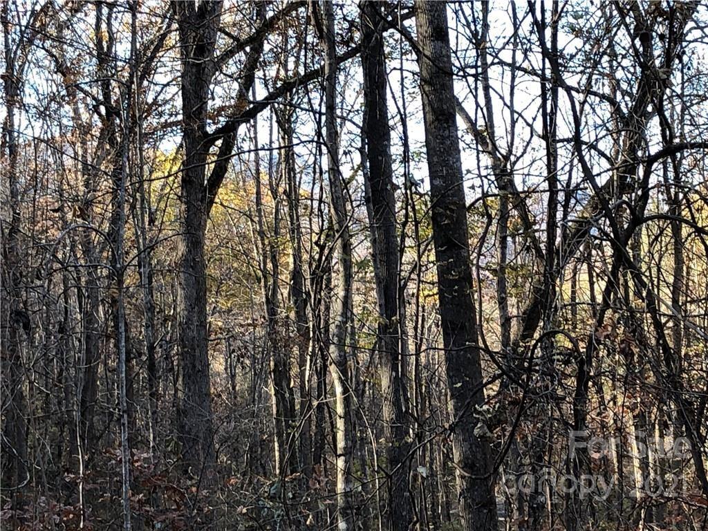 Photo of 0000 High Rock Ridge #Lot 32, Ph 1, Lake Lure, NC 28746 (MLS # 3573091)
