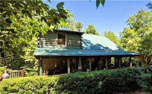Photo of 327 Luther Burbank Drive, Lake Lure, NC 28746 (MLS # 3519097)