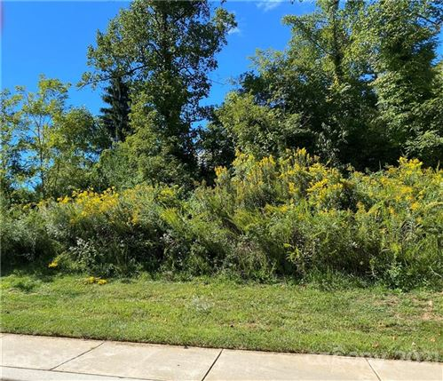 Photo of 18 Snap Dragon Court #3, Asheville, NC 28804 (MLS # 3789107)