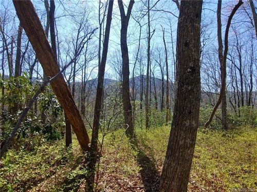 Photo of OFF Slick Fisher Road, Lake Toxaway, NC 28747 (MLS # 3540108)